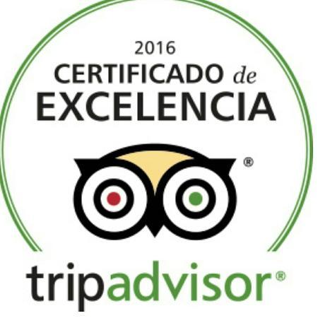 certificado-de-excelencia